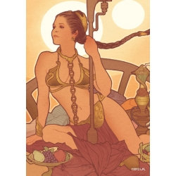 Illustrated covers Princess Leia (TM) covers for Cards from Fantasy Flight Games