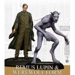 Remus Lupin & Werewolf Form (English)