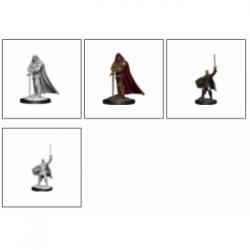 D&D Nolzur's Marvelous Miniatures - Human Paladin Male (6 Units)