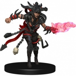 D&D Icons of the Realms: Set 10 Companion Starter Two - EN
