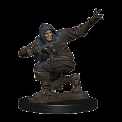 Pathfinder Battles: Premium Painted Figure - Human Rogue Male (6 Units) - EN