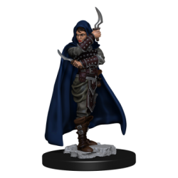 Pathfinder Battles: Premium Painted Figure - Human Rogue Female (6 Units) - EN