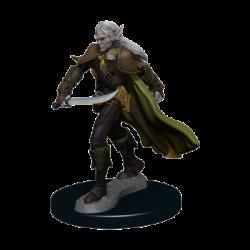 Pathfinder Battles: Premium Painted Figure - Elf Fighter Male (6 Units) - EN