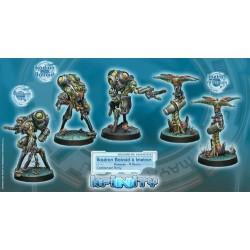 Ejército Combinado: Ikadron Batdroids & Imetron